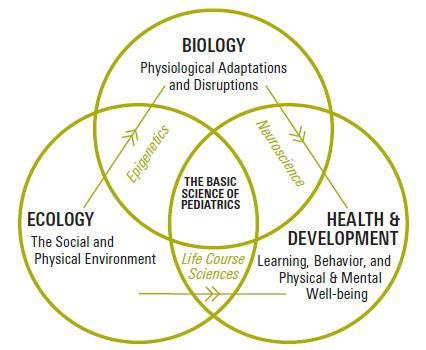 The Basic Science of Pediatrics