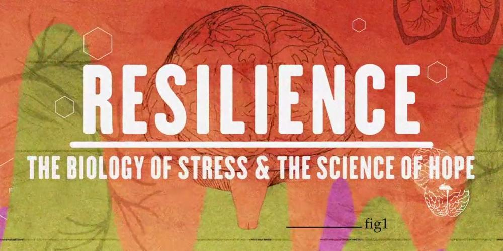 Calendar You Can Type On : Resilience documentary now available to license for