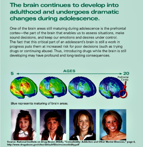 How Trauma Is Changing Childrens Brains >> Tracing One S Family Aces Tree To Break The Familial Cycles