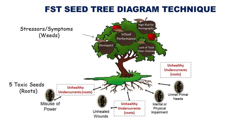 Free Trauma Webinar  Seed Tree Diagram