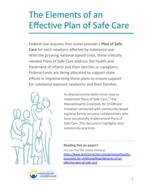 Plan of Safe Care