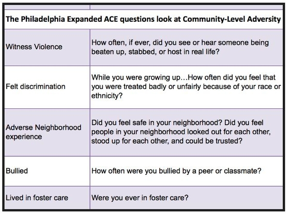 THE PHILADELPHIA EXPANDED ACE SURVEY