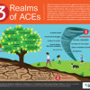 ACES w environment-climate effects 100219