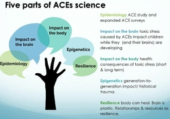 ACES science