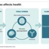 G-toxic-stress-and-health-alt