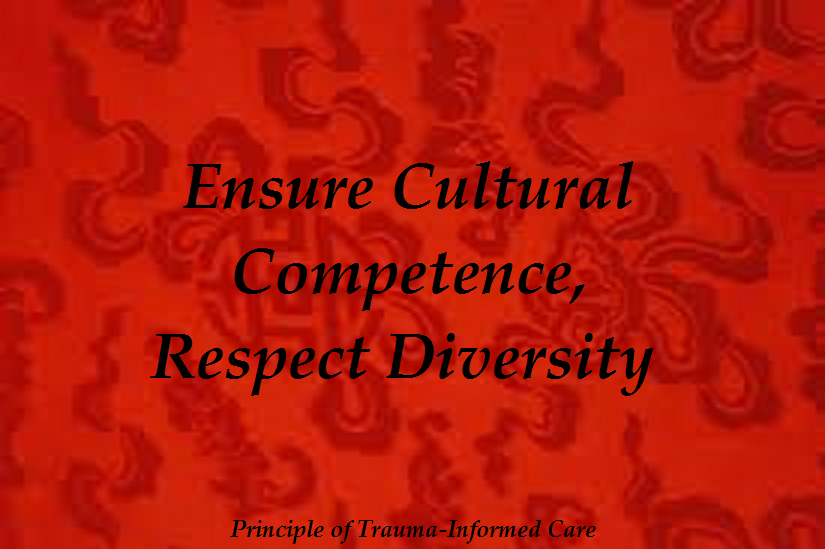 3-TIC-CulturalCompetence0