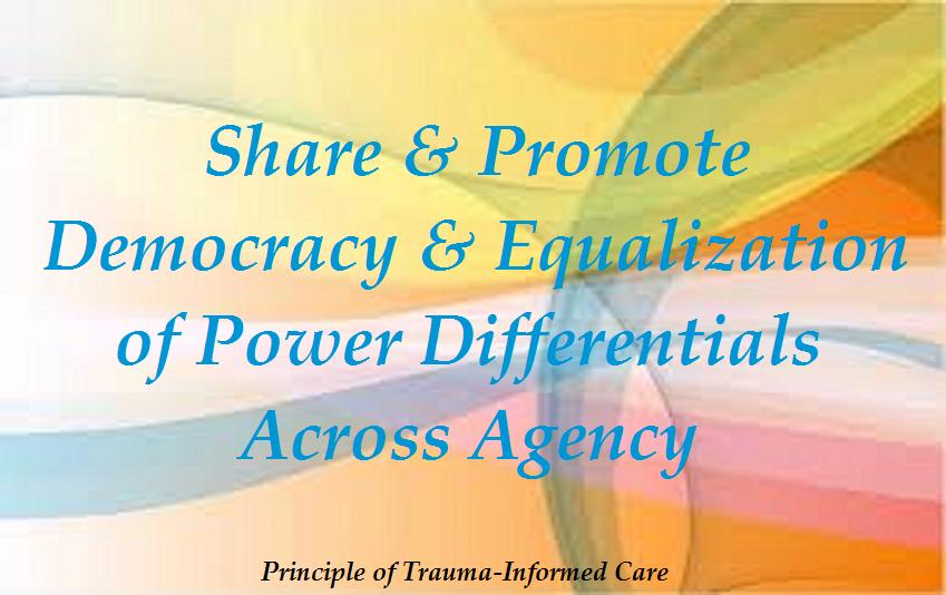 5-TIC-SharePowerGovernance0