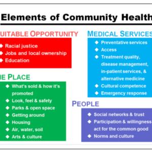 Health Educ Behav-2016-Building a Thriving Nation.pdf