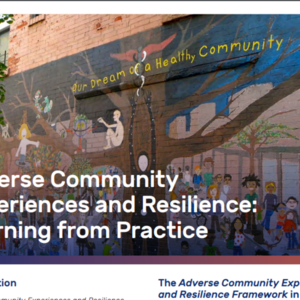 Adverse Community Experiences and Resilience: Learning from Practice (4 pages - The Prevention Institute)