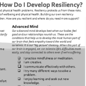 ACEs and Resilience Survey (StopSpanking.org, 2016)