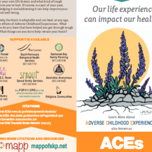 Creating a Connected Community -- public ACEs pamphet (2015, Homer Alaska)