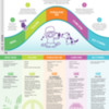 tantrum-infographic.pdf