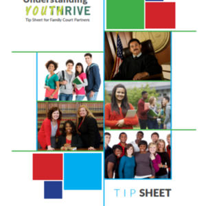 Tip-Sheets-Family-Courts_Center for Social Study of Policy (37 pages)