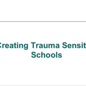 CreatingTraumaSensitiveSchoolWINotes.pdf
