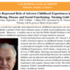 California ACEs Academy Event: The Repressed Role of Adverse Childhood Experiences in Adult Well-Being, Disease and Social Functioning: Turning Gold into Lead