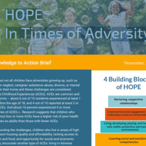 HOPE in Times of Adversity _ Knowledge to Action Brief (2-pages).pdf
