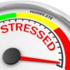 Free Webinar:  Neutralize Family Anxiety