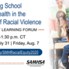 Supporting School Mental Health in the Context of Racial Violence: Part 2