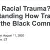 What Is Racial Trauma? Understanding How Trauma Affects the Black Community [Relias.com]