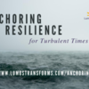 FREE: Anchoring Resilience for Turbulent Times