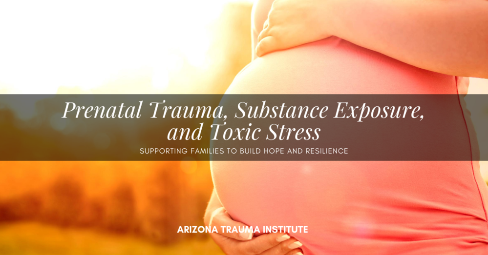 Prenatal Exposure Conference – LIVE WEBINAR