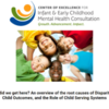 How Did We Get Here? An Overview of the Root Causes of Disparities in Child Outcomes, and the Role of Child Serving Systems [iecmhc.org]