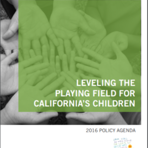 Childrens Defense Fund - leveling-the-playing-field Policy Agenda 2016.pdf
