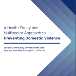 A Health Equity and Multisector Approach to Preventing Domestic Violence (58 pages) Prevention Institute.pdf