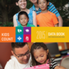 aecf-the2015kidscountdatabook-cover-2015