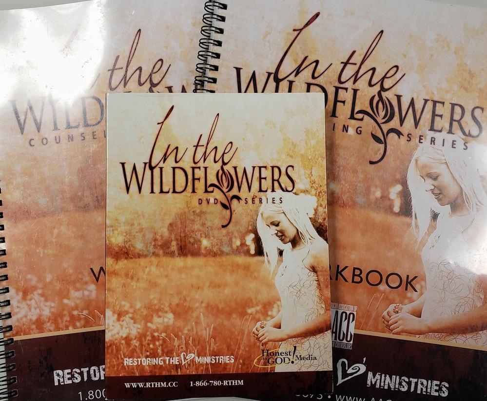 In The Wildflowers - Women's 12 Week Christian Healing Series