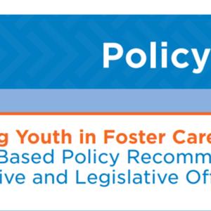 2017-13 Child Welfare Policy Brief.pdf