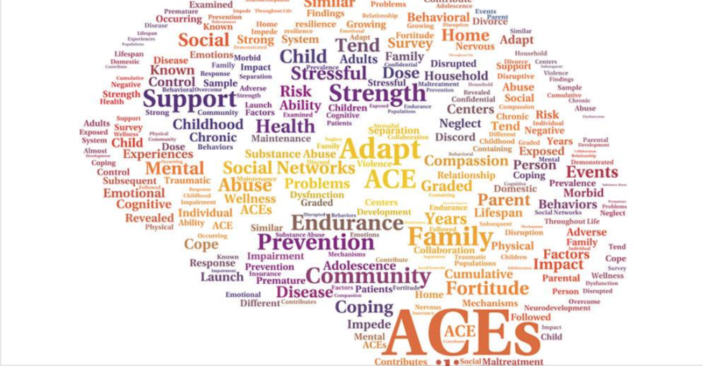 FACES of ACEs - Lifelong Impact of Adverse Childhood Experiences Conference - Bloomington, Indiana