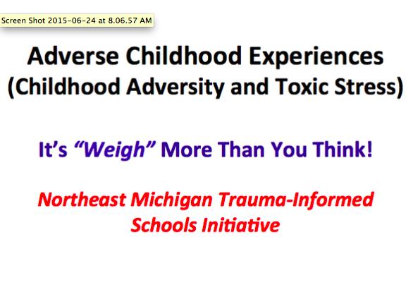 Northeast Michigan Trauma-Informed Schools Initiative