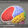 Poverty vs the Developing Brain: 60 Second Know-It-All