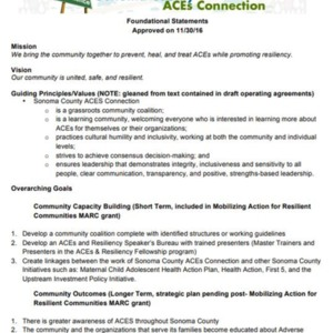 Foundational Statements and Steering Committee Guidelines.pdf