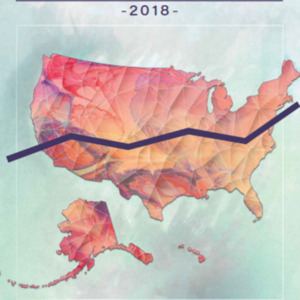 Health, United States 2018 Chartbook: Center for Disease Control, U.S.HHSA (65 pages)